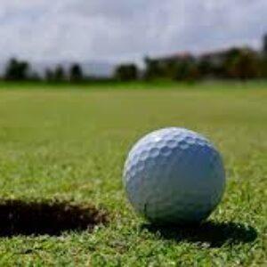 Group logo of Golf